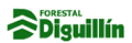 Forestal Diguillín