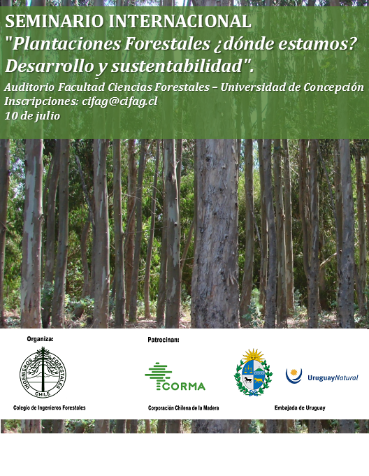 afiche seminario biobio 10 de julio_2