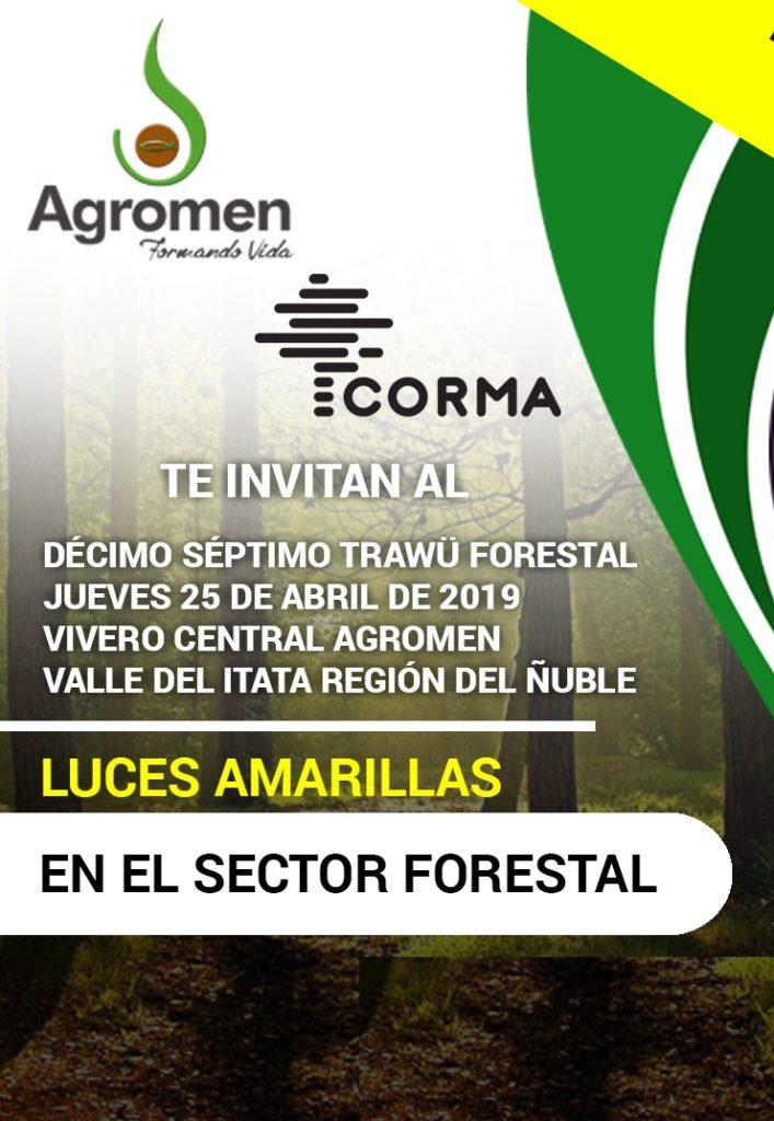 17° Trawü Forestal: Luces Amarillas en el Sector Forestal