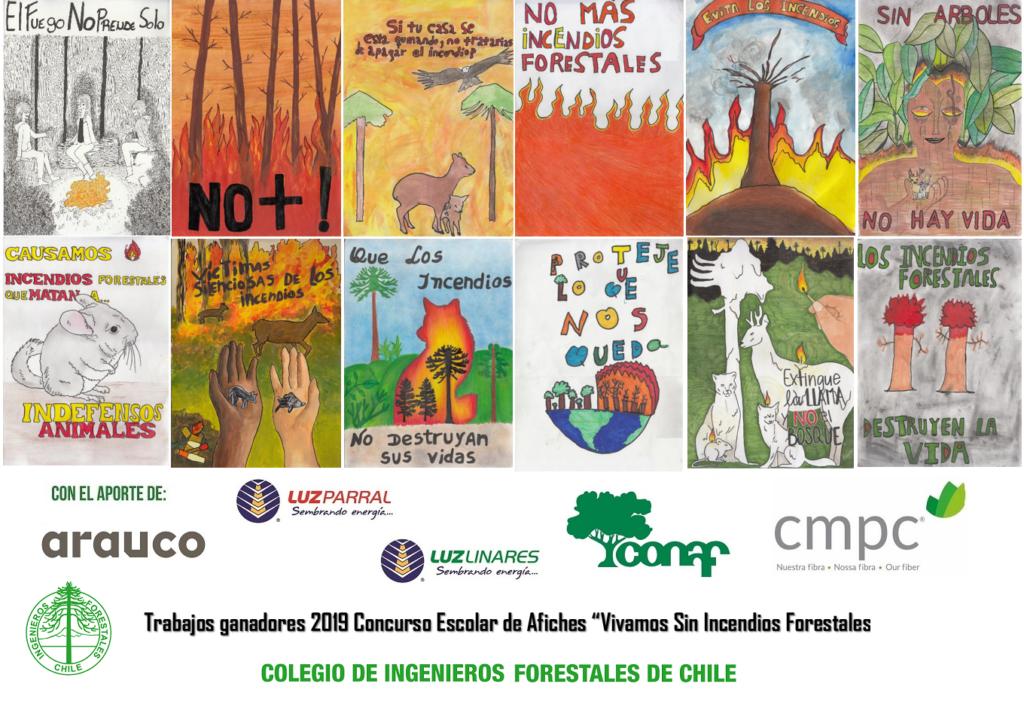 """Resultados Concurso Escolar Afiches """"Vivamos sin Incendios Forestales"""" 2019"""