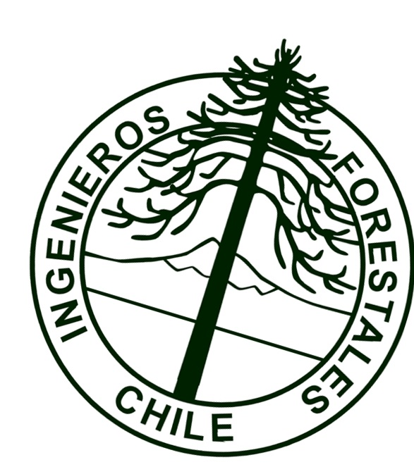 Declaración pública por fallo que multa a empresa forestal por daño a ejemplares de araucaria
